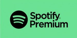 scaricare musica da spotify 2